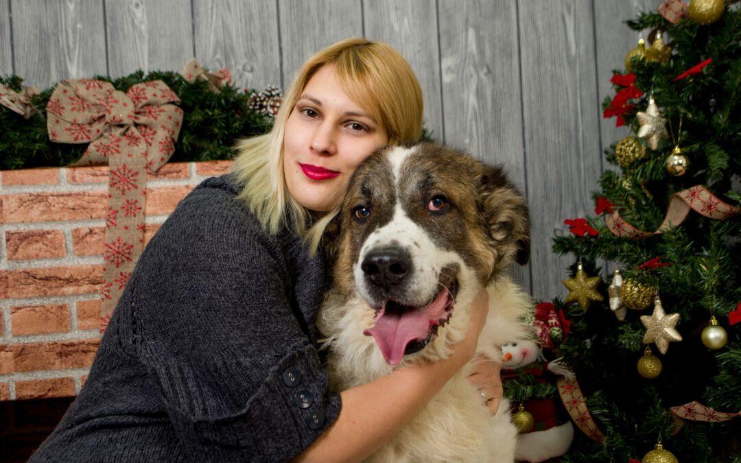 Propósitos de Año Nuevo para tu perro